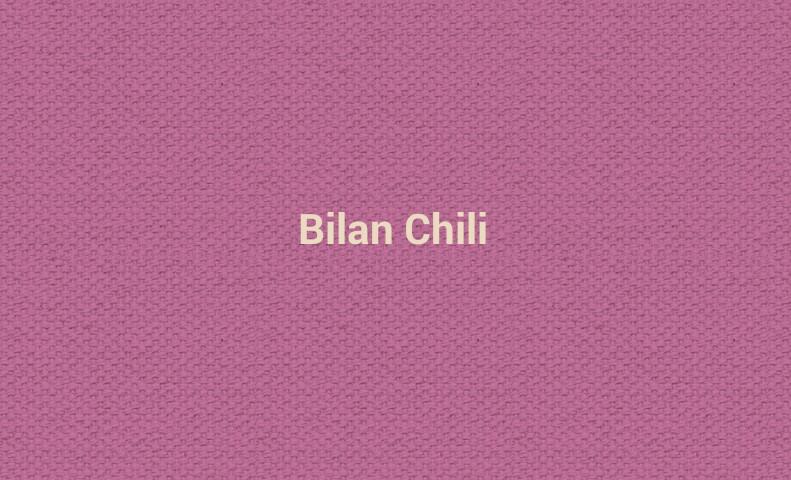 Bilan Chili